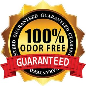 odor removal service for auto dealers - 100% Odor Free Guarantee
