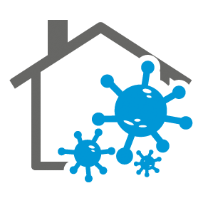 mold and mildew odor removal